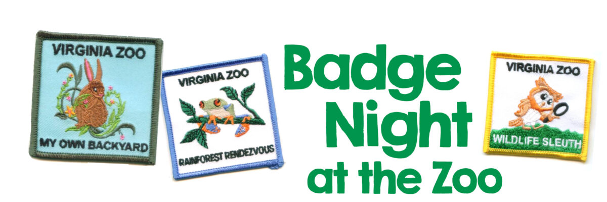 VAZOO_Badge Night 2016_website page