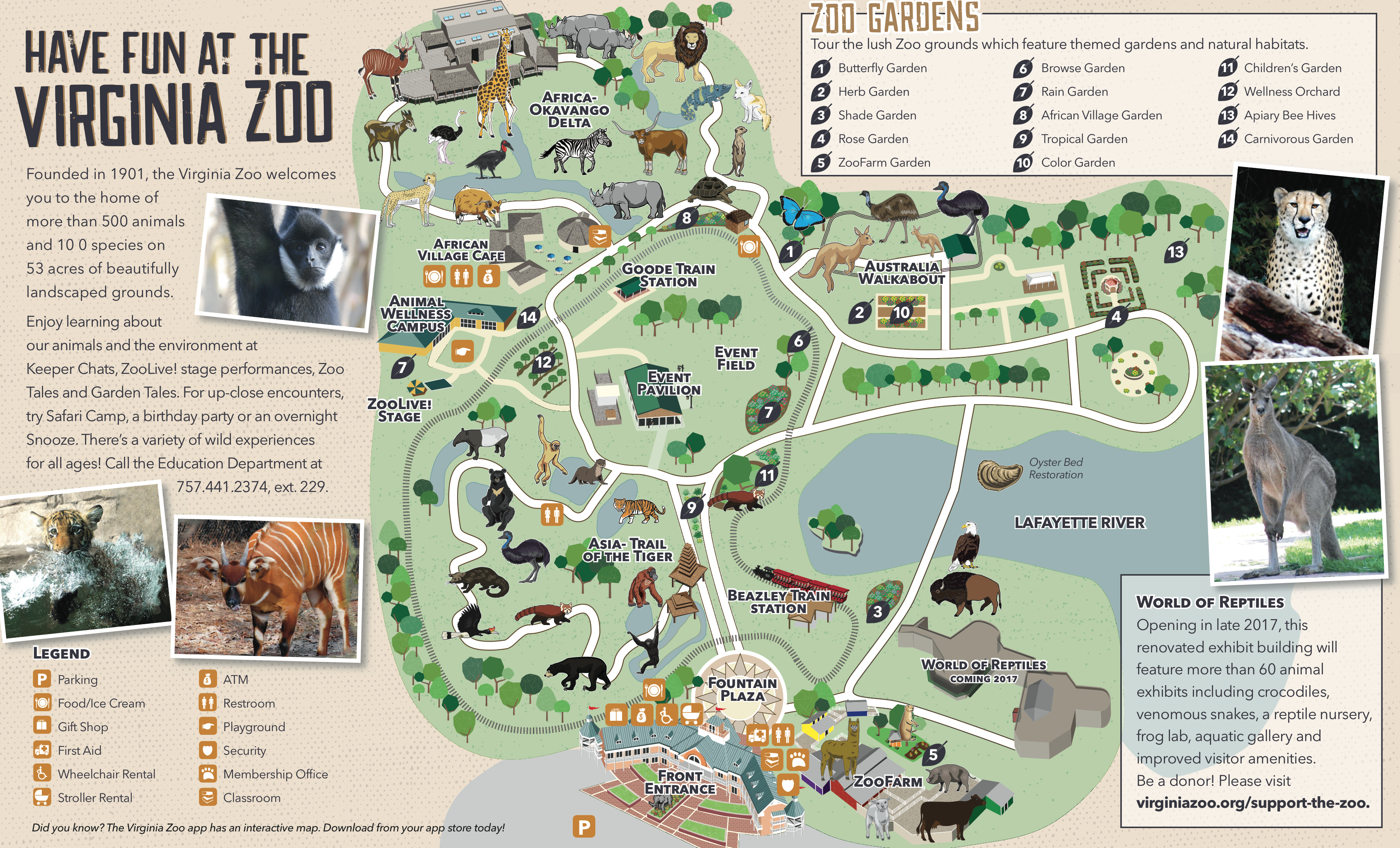 download the map to print here or download our app and carry the zooeverywhere you go. zoo map  virginia zoo in norfolk