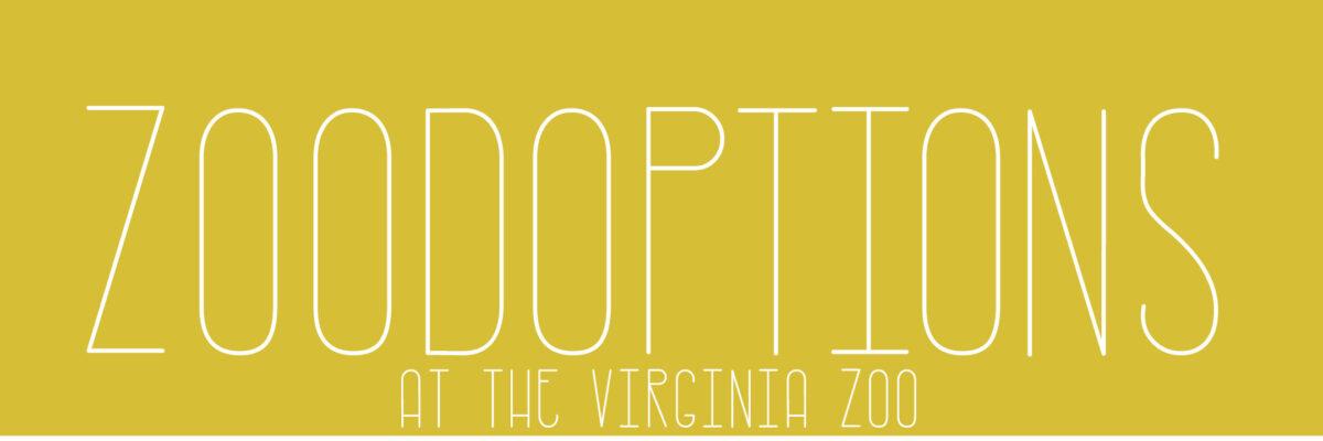 VAZOO_Zoodoption_website page plain