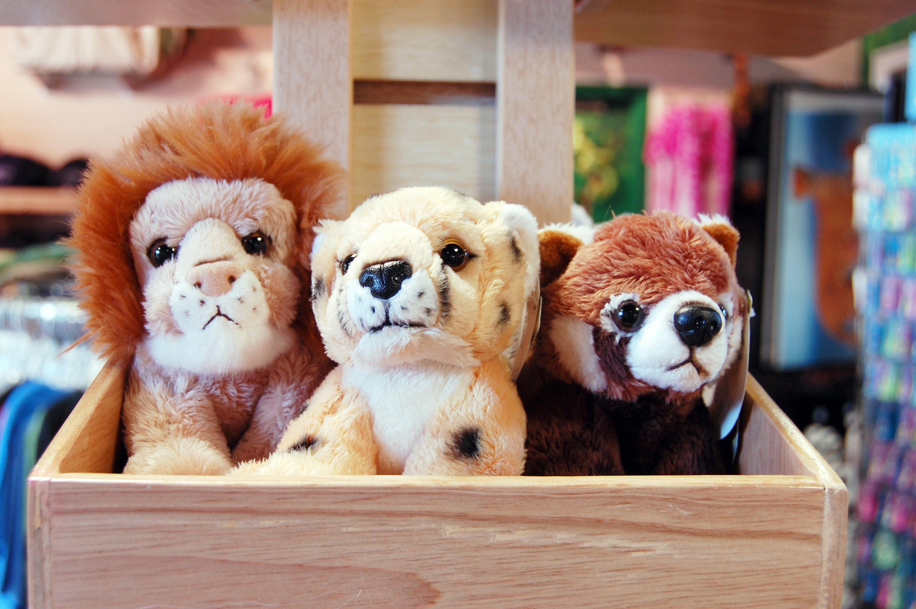 Stuffed Toys - Plush Animals - Kmart