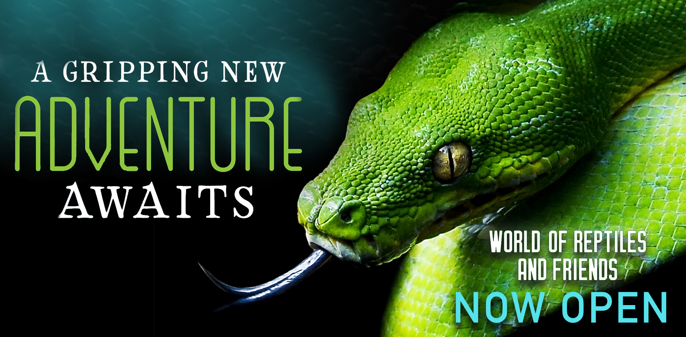 NOW OPEN_Homepage snake