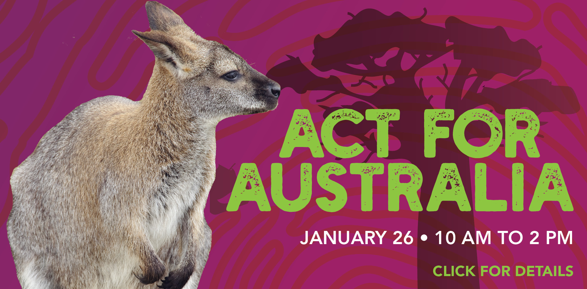 VAZOO_Aussie Day_home page