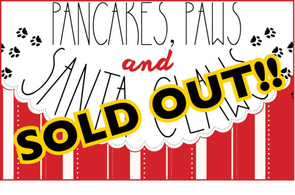 VAZOO_Pancakes 2015_SOLD OUT BUTTON