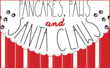 VAZOO_Pancakes 2015_website button