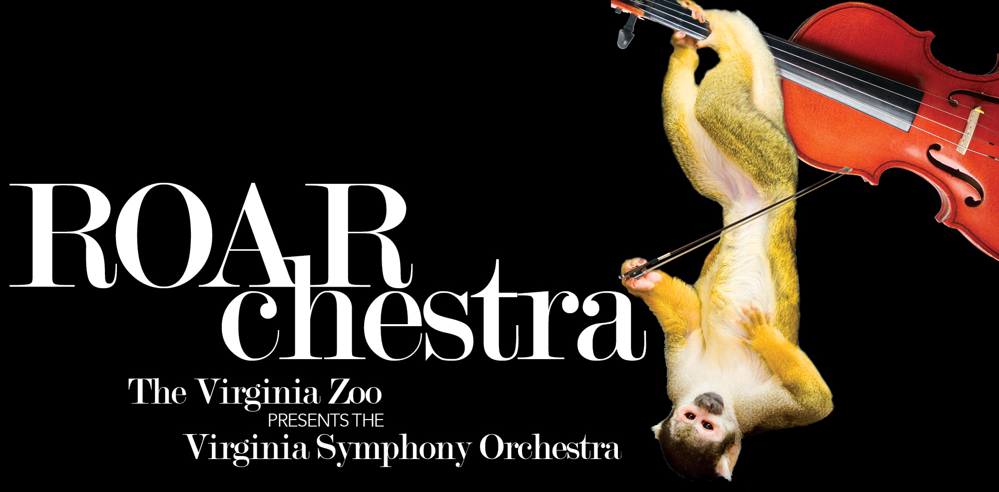 VAZOO_ROARchestra 2015_website slider