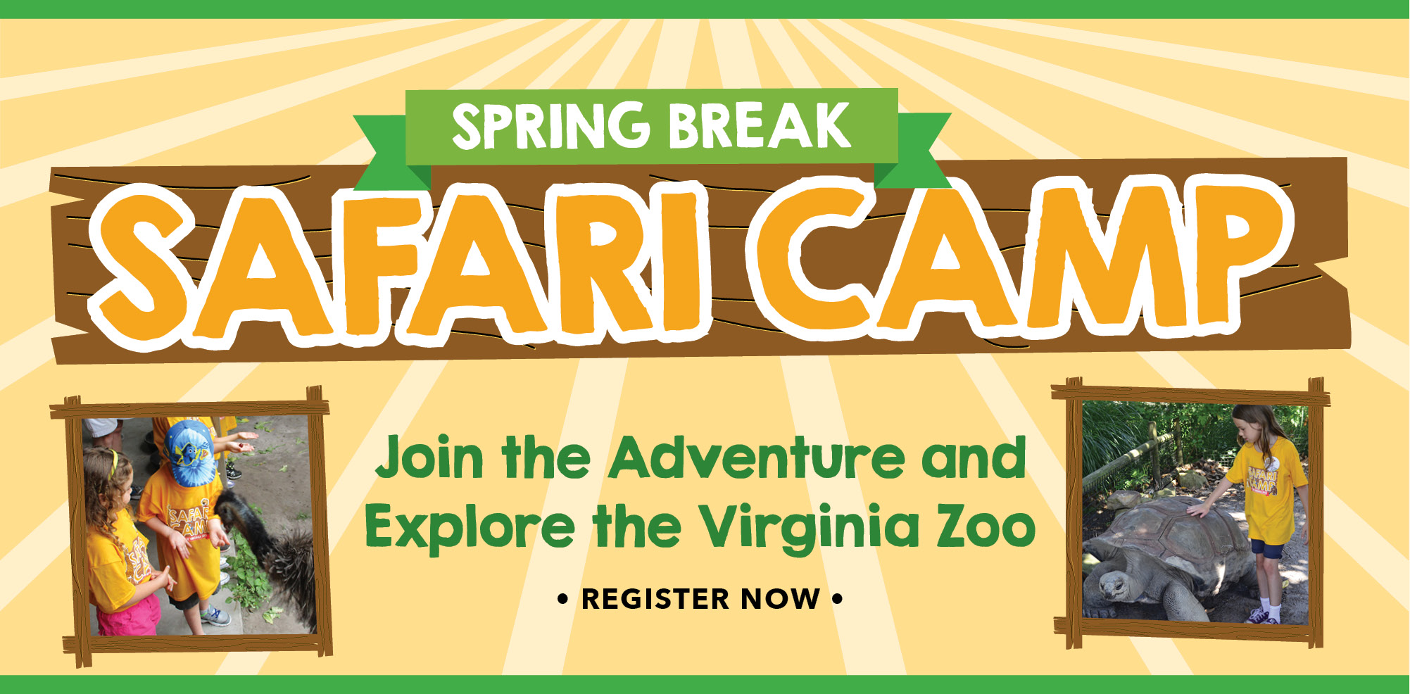 VAZOO_Safari Camp 2017 Web banner