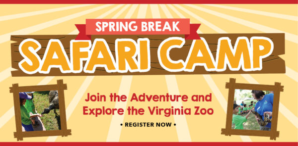 VAZOO_Spring Break Safari Camp