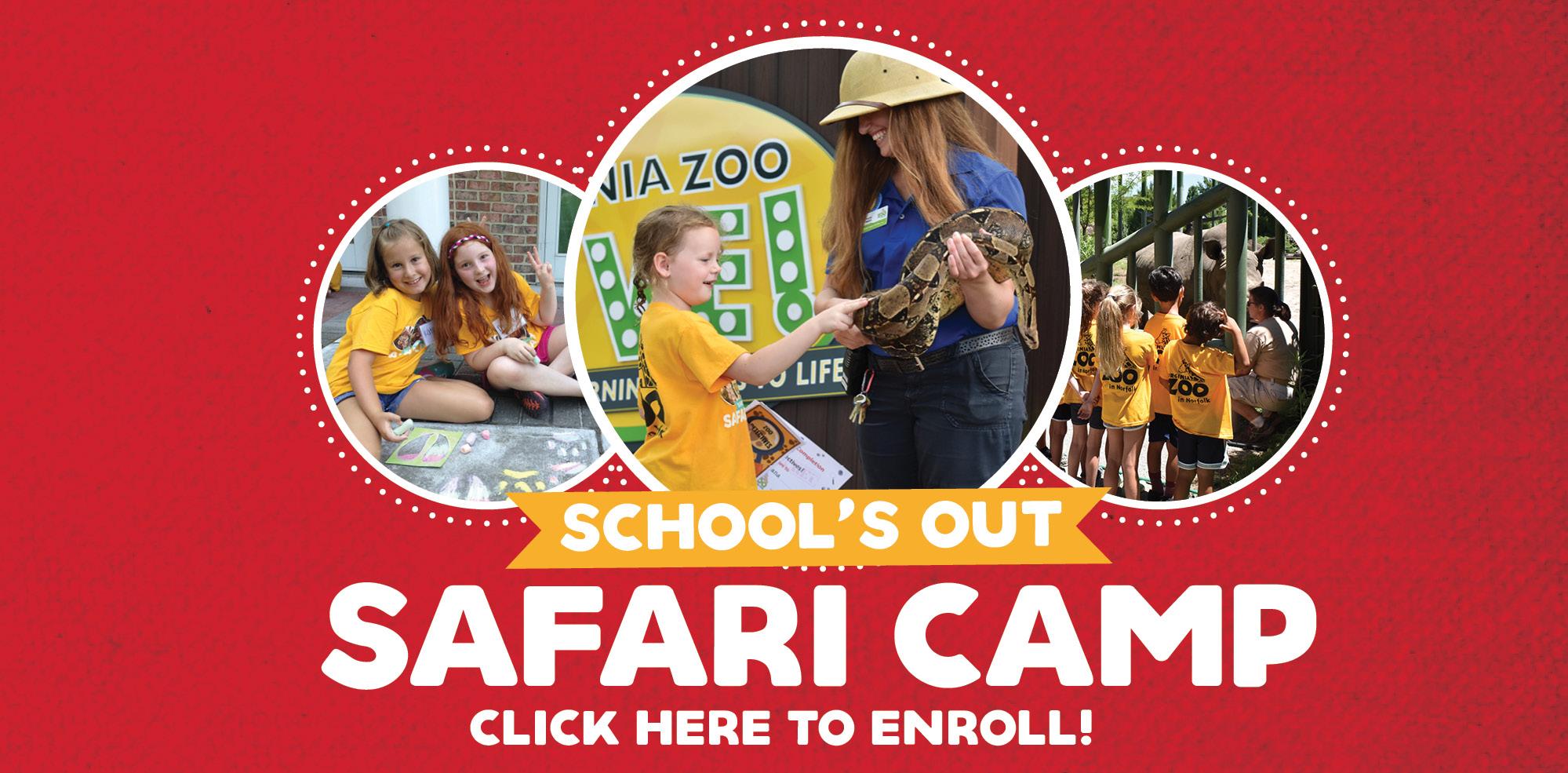 VAZOO_Summer Camp_homepage banner
