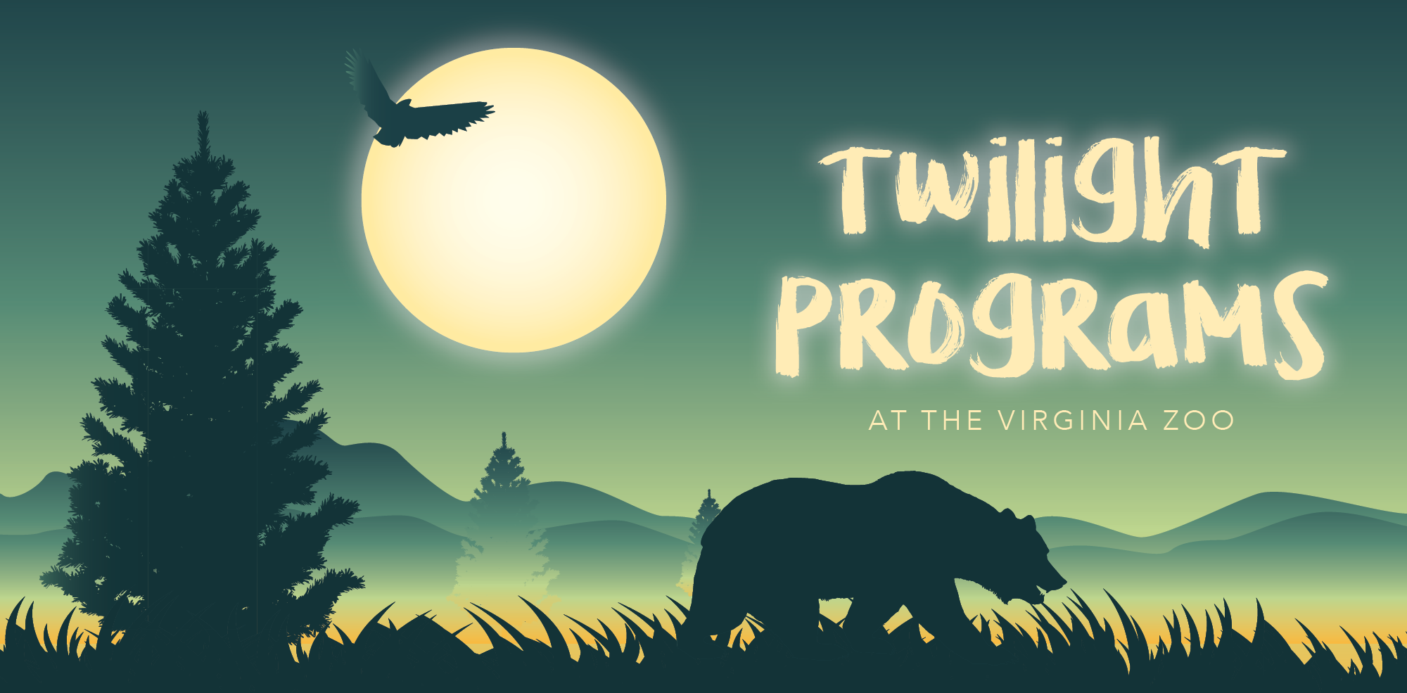 VAZOO_Twilight online_web banner