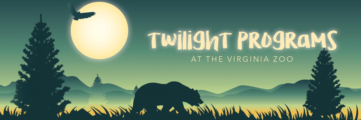 VAZOO_Twilight-online_web-page-1200×400