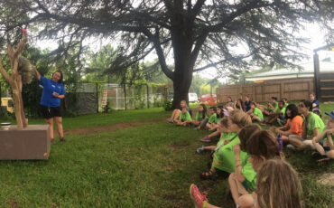 camp 2015 2