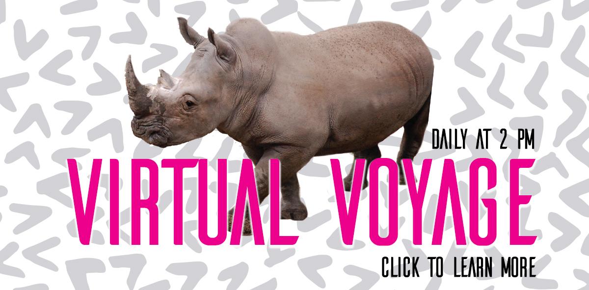 virtual voyage homepage
