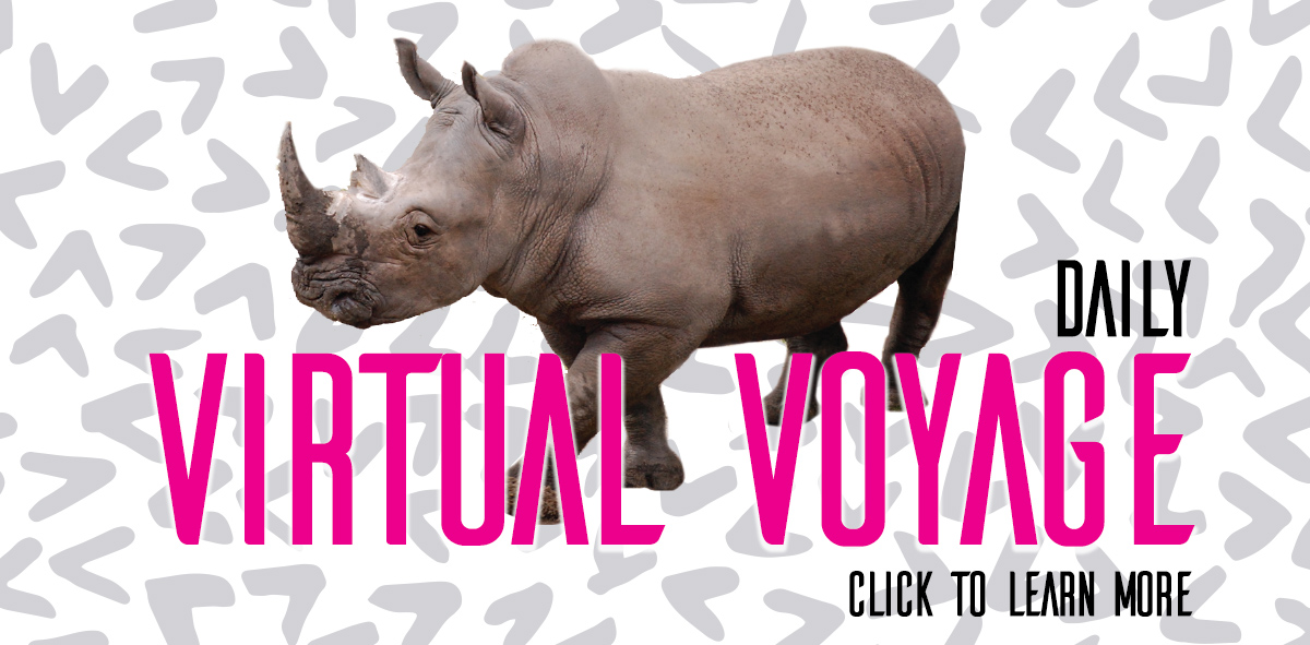virtual voyage homepage2