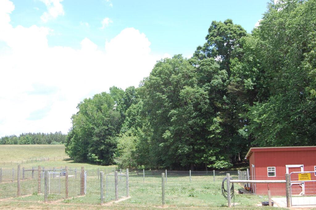 Country Charm Farm