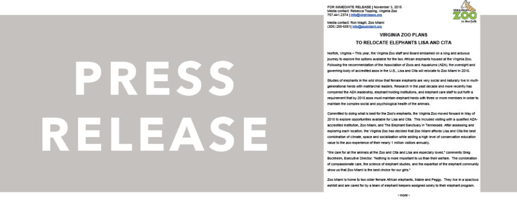 Elephant Button Press Release