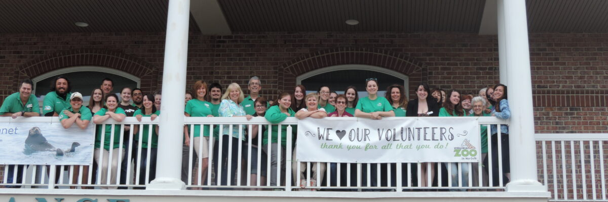 volunteers 2015