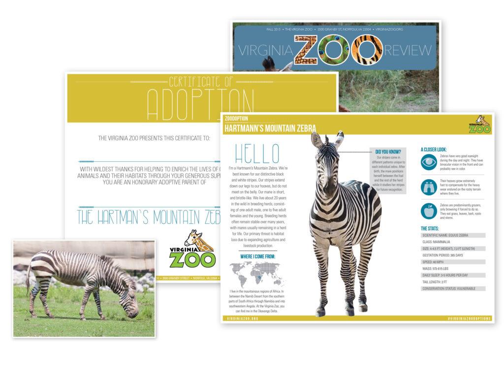 Zoodoption Class Level 1