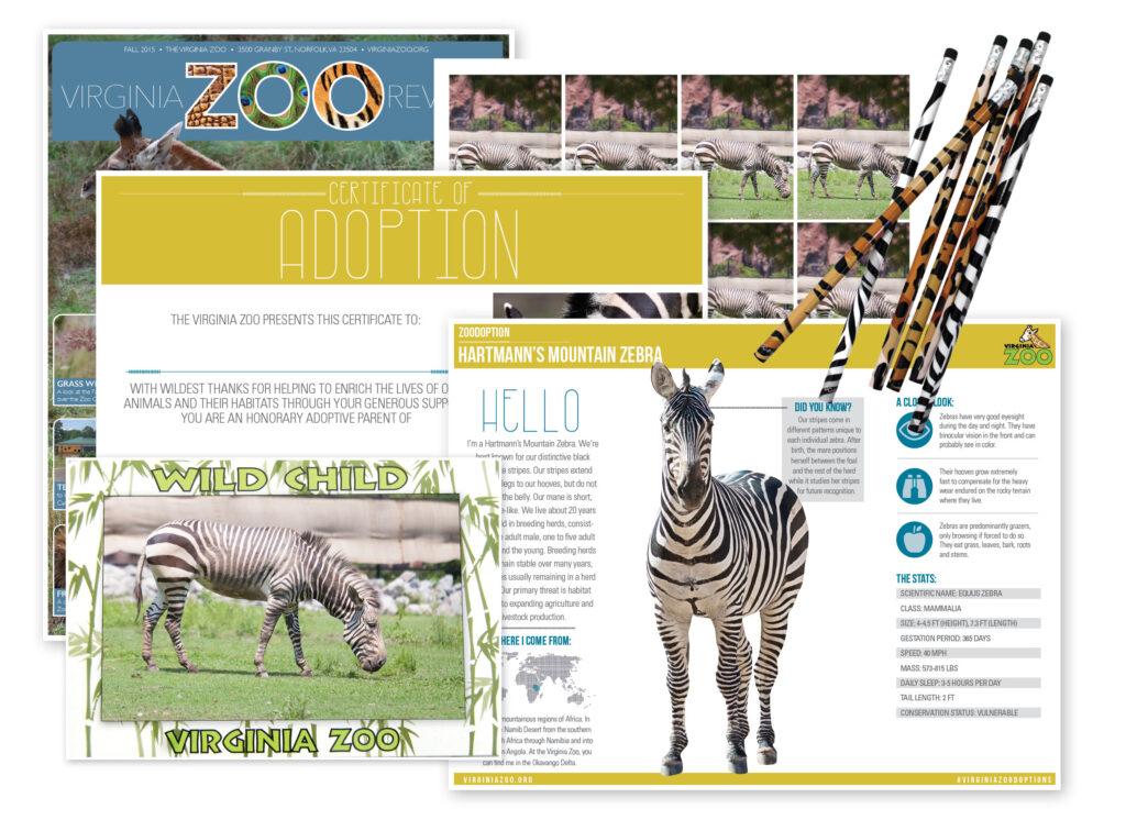Zoodoption Class Level 2