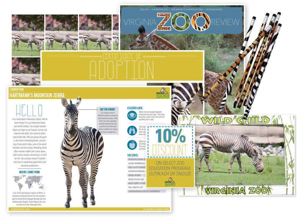 Zoodoption Class Level 3