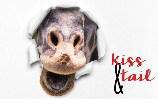 VAZOO_Kiss Tail 2016_button