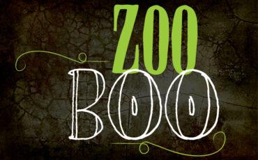 VAZOO_ZooBoo website button