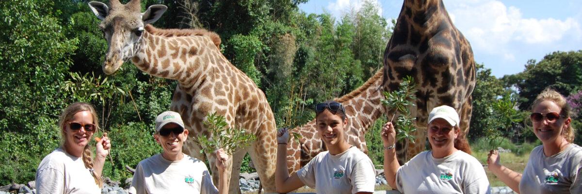 Meet the Africa Team Virginia Zoo in Norfolk