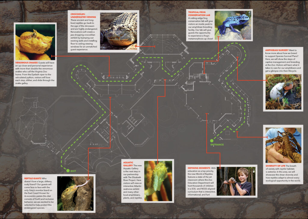 Reptile Brochure Center