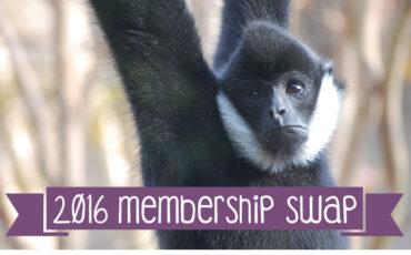 VAZOO_Membership Swap 2016_button