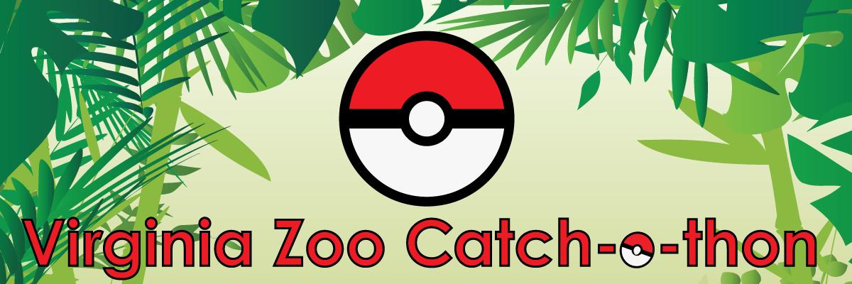 catchathon-web-banner