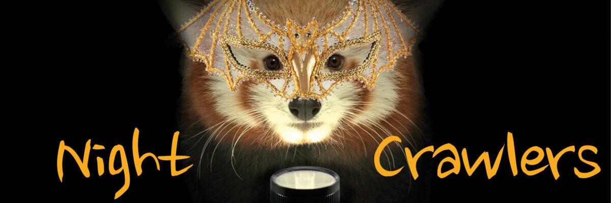 VAZOO_Night Crawl Online web page