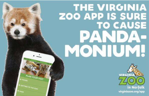 thumbnail_vazoo_app-promo_pandamonium