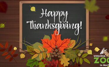 happy-thanksgiving-zoo-logo