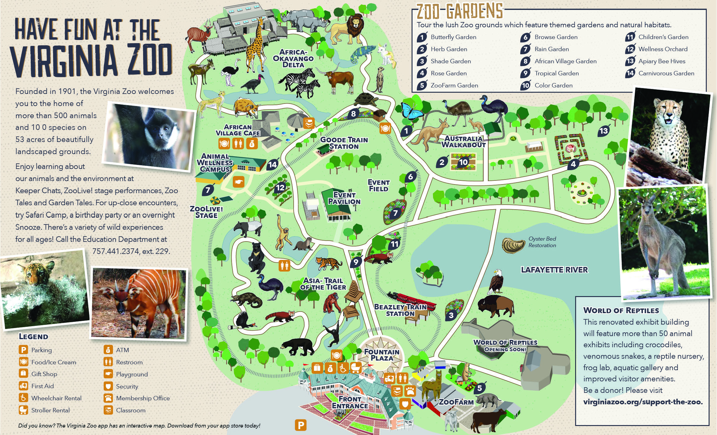 Zoo map virginia zoo in norfolk zoo map gumiabroncs Images