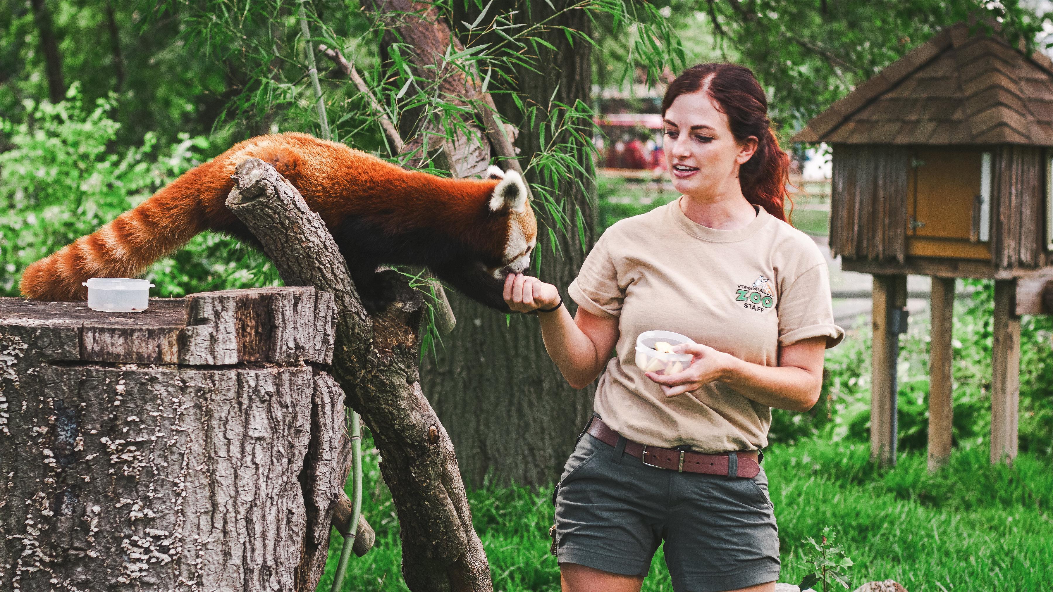 Zoo Calendar : Calendar photo contest virginia zoo in norfolk