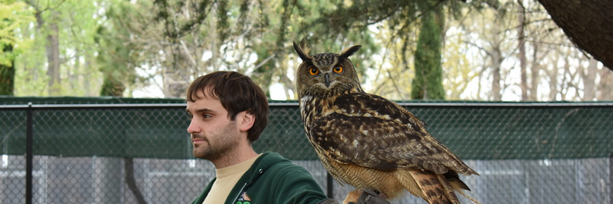 Virginia Zoo Keeper with Eurasian Eagle Owl during a program