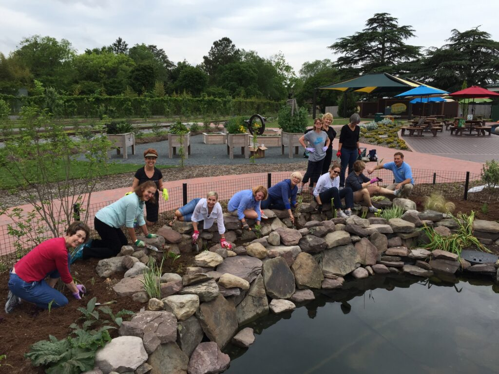 Group of people bent over planting around a pond
