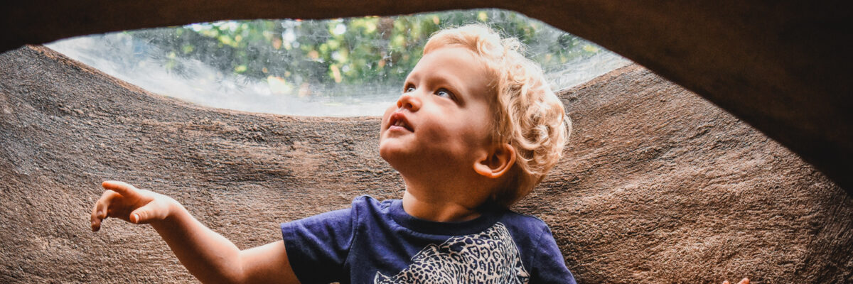 Toddler boy looking up through a hole